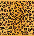 leopard skin seamless pattern jaguar cheetah vector image