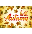 nature leaf Hello Autumn Watercolor orange vector image
