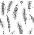 Seamless pattern with ears of wheat vector image vector image