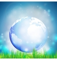 Abstract background of globe with grass View at vector image vector image