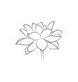 beautiful lily or lotous flower simple black lined vector image vector image