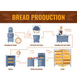 bread production cartoon infographics vector image