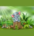 cartoon a baby elephant sitting on tree stump vector image vector image