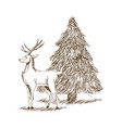 christmas deer and tree engraving style vintage vector image