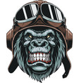 monkey in helmet pilot vector image