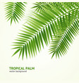 realistic 3d detailed green palm tree background vector image vector image