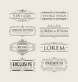 set vintage luxury calligraphy flourishes elegant vector image