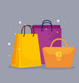 shopping bags and handbag to sale offer vector image vector image