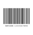 unique bar code template striped identification vector image vector image
