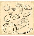 Vegetables Pictograms Set vector image vector image