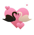 black and white swans and hearts vector image