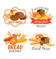 bread products vector image