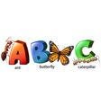 English alphabet abc with words vector image