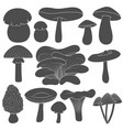 set of black and white images with mushrooms vector image