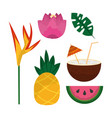 tropical set of flowers pineapple coconut cocktail vector image vector image