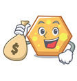 with money bag hexagon character cartoon style vector image vector image