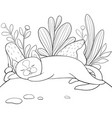 a children coloring bookpage a sleeping cat on vector image vector image