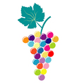 Abstract colorful bunch of grapes vector image vector image