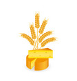 cheese wheel slice of cheese and wheat ears vector image