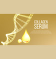 collagen serum molecule and drop banner vector image vector image