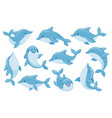 dolphin characters funny dolphins jump and swim vector image vector image