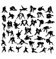 Martial Arts Competition Silhouettes vector image vector image