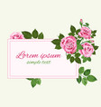 pink roses card on light green vector image vector image