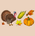 pumpkin and autumn leaves isolated icons vector image