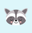 raccoon cute cartoon sleepeng animal icon vector image