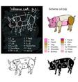 scheme cutting pig vector image