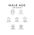 set line icons male age vector image