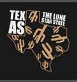 texas apparel print vector image vector image