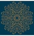 Vintage ornamental round pattern vector image