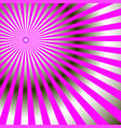 abstract radial rays of bright pink color vector image