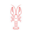 crayfish outline vector image