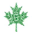 decorative ornament maple leaf vector image vector image