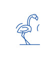 flamingo line icon concept flamingo flat vector image