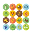 Flat design icons for fruits and vegetables vector image vector image