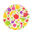 Fruits Sphere vector image