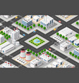isometric plant in 3d dimensiona vector image vector image