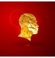 a golden foil human face on the red vivid vector image