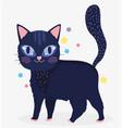 black cat with eye shine domestic cartoon animal vector image vector image