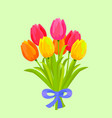 bouquet of colorful tulips bound with blue ribbon vector image