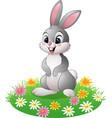 cartoon rabbit on the grass vector image vector image