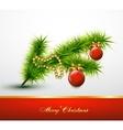christmas ball on tree branch vector image