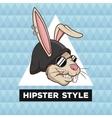 portrait fun rabbit hipster style furry geometric vector image