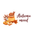 pumpkin spice latte and biscuits flat vector image