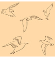 Seagulls sketch Pencil drawing by hand Figure in vector image vector image