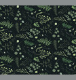 seamless pattern eucalyptus palm fern leaves vector image vector image