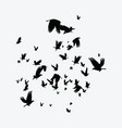 silhouette of a flock of birds black contours of vector image vector image